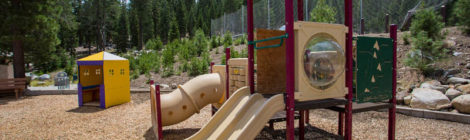 Help Guide Squaw Valley Park's Future!